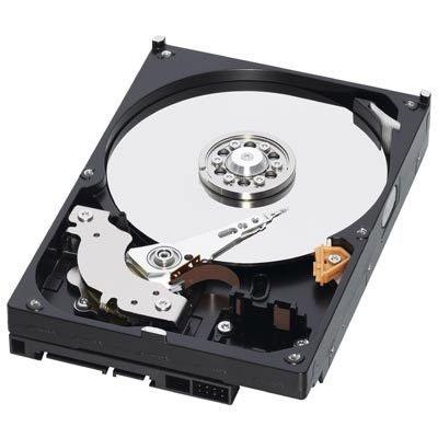 Festplatten/SSD