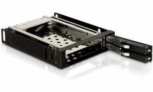 DELOCK Wechselrahmen für 2x 6,4 cm (2,5) SATA Festplatten,