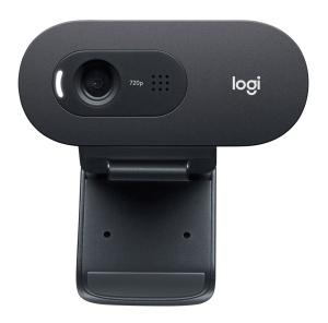Logitech HD Webcam C505e Business