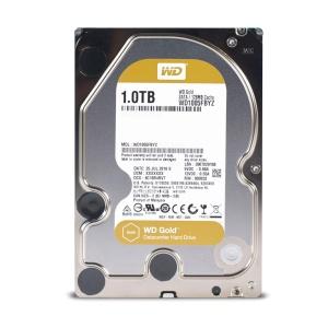 Western Digital Gold Datacenter WD1005FBYZ, 1 TB